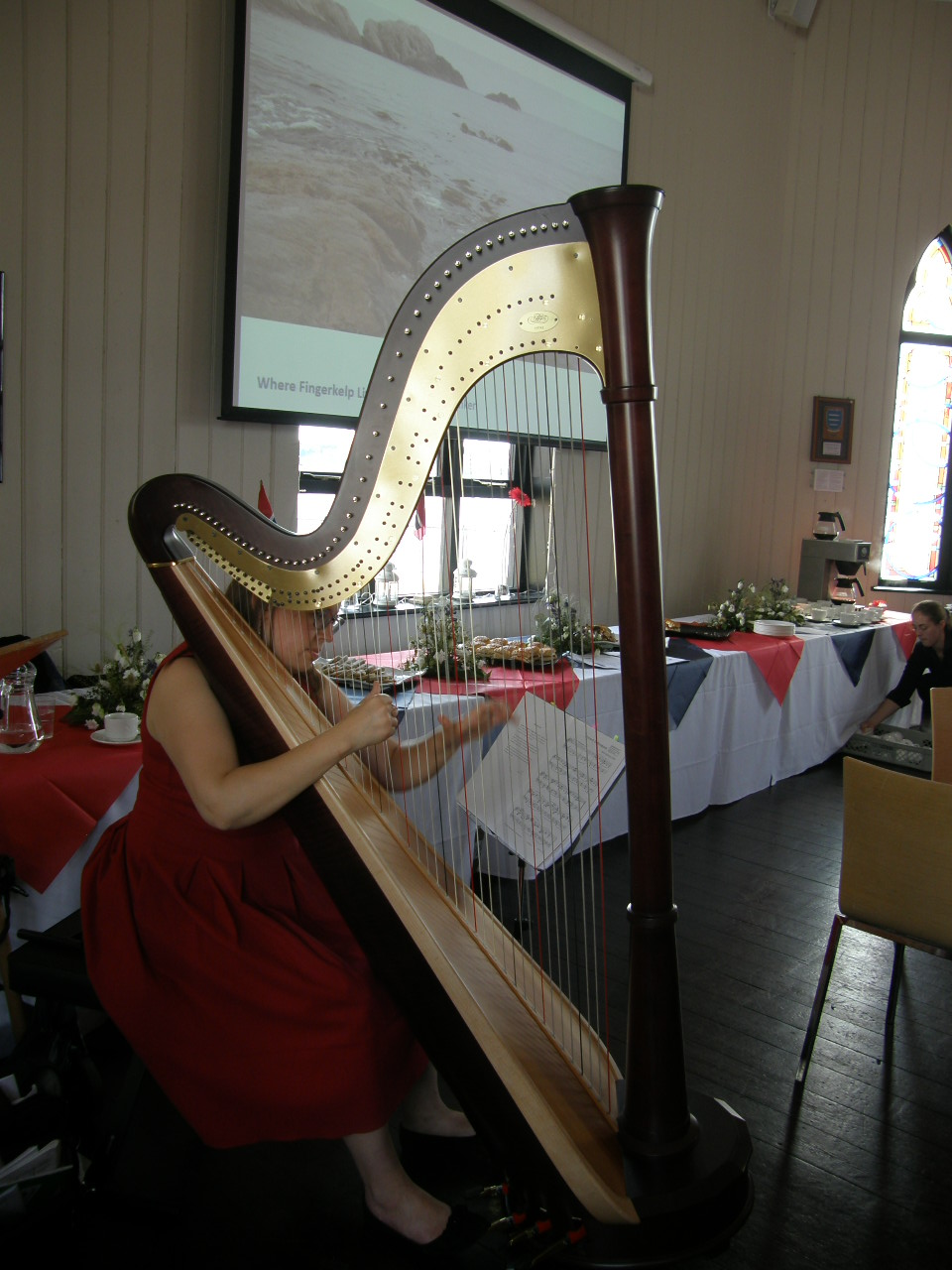 Angharad Edwards performs at the Friday reception