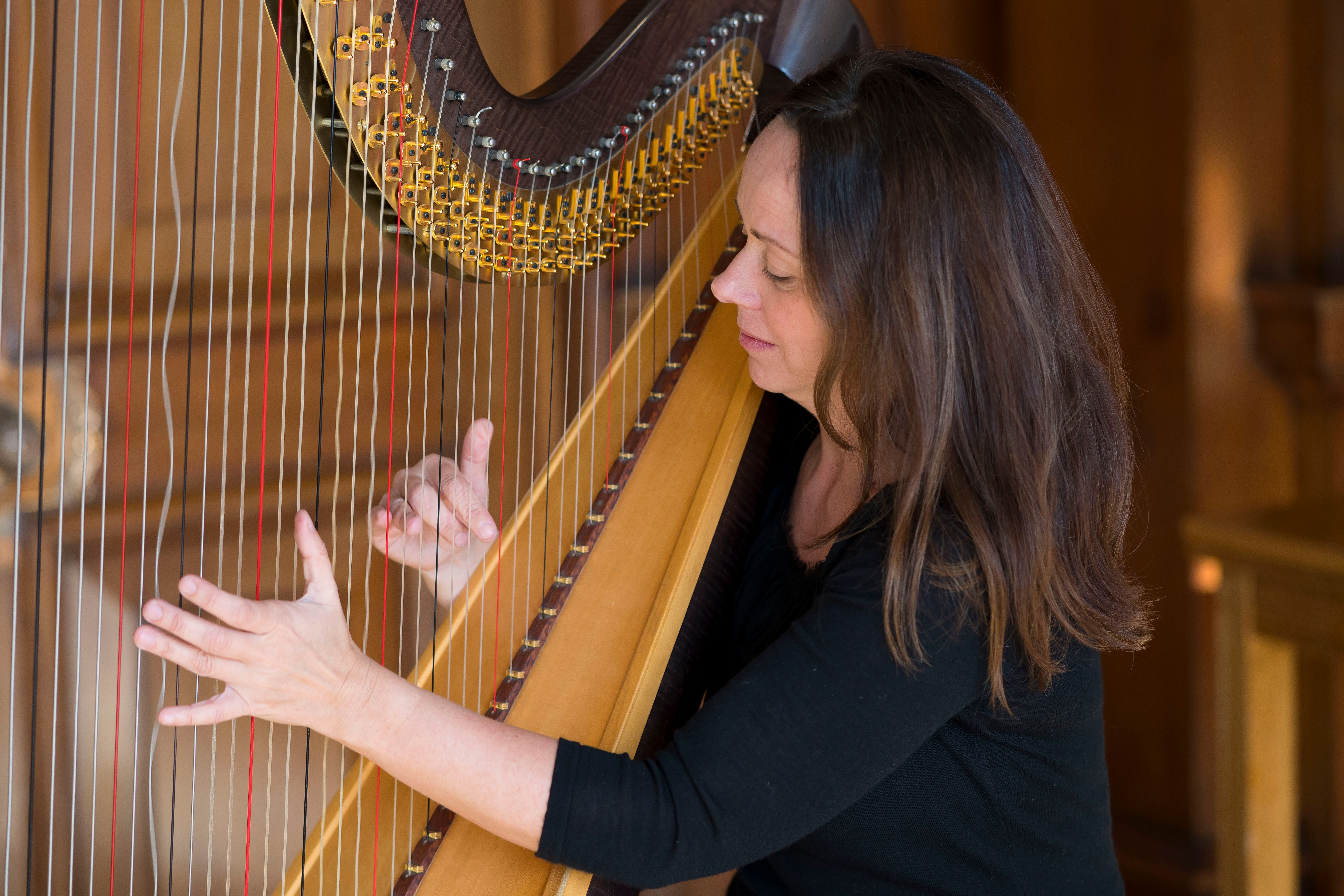 A harpist entertaining the delegates