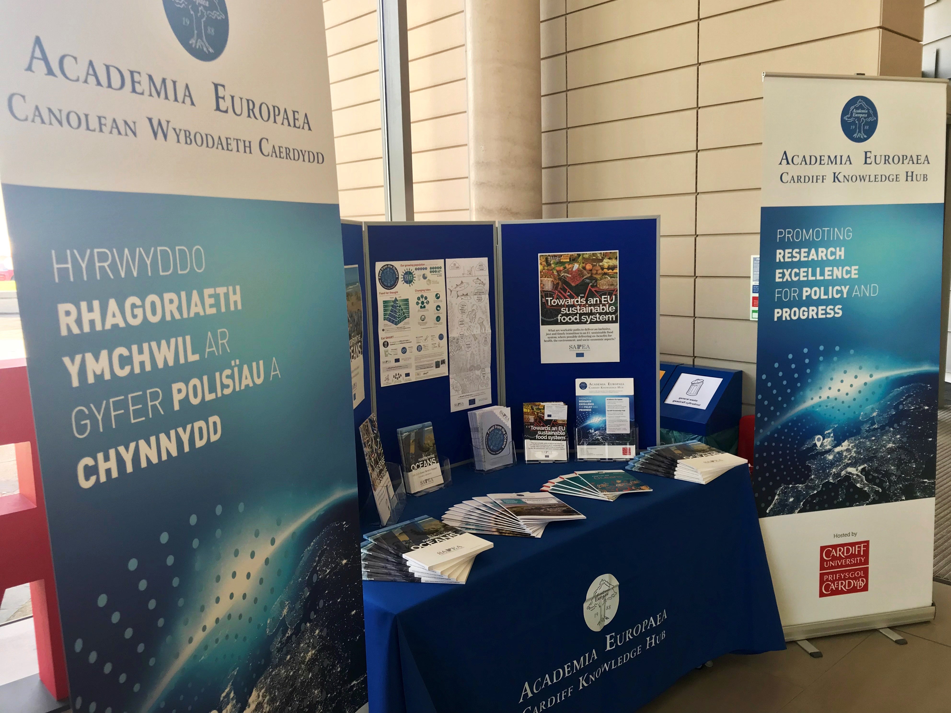 AE Cardiff stand