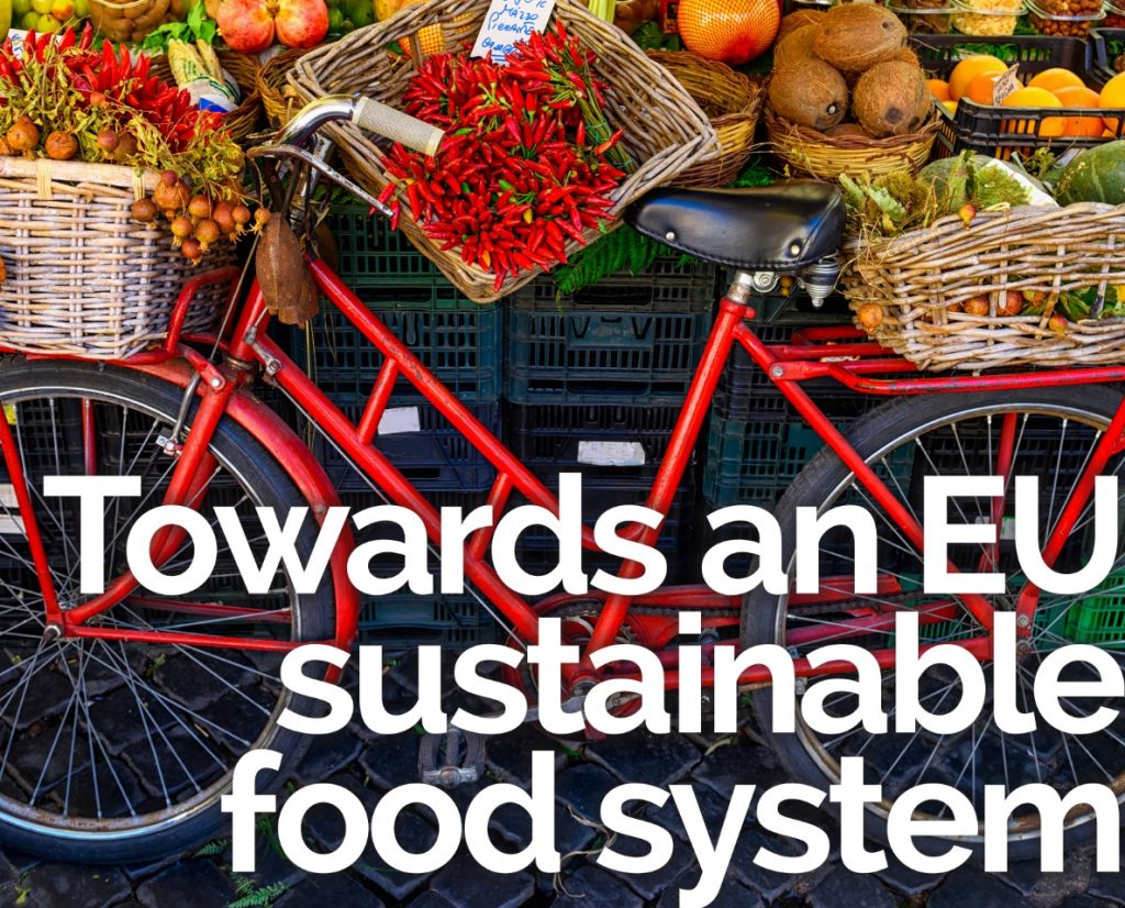 Sustainable Food System promotional material