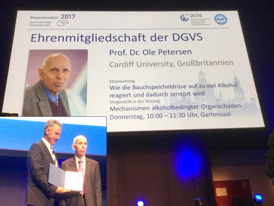 Professor Petersen receives his award from President Professor Markus Lerch MAE
