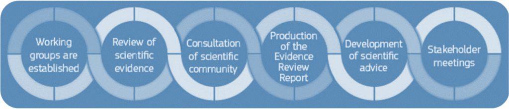 SAPEA Evidence Review process