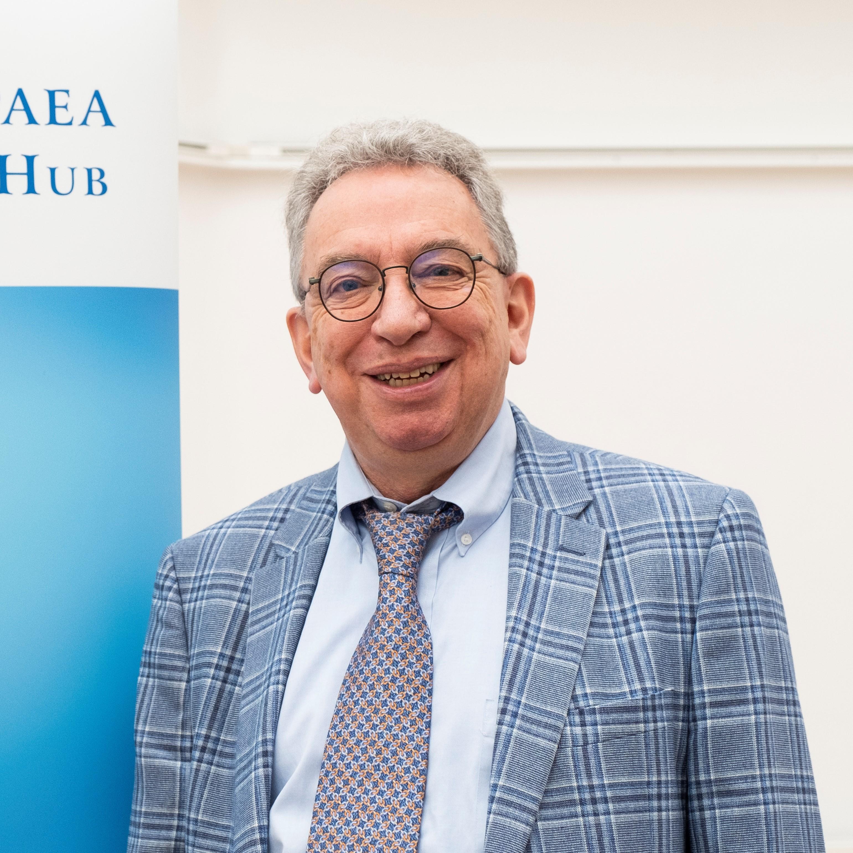 Professor Theo D'haen